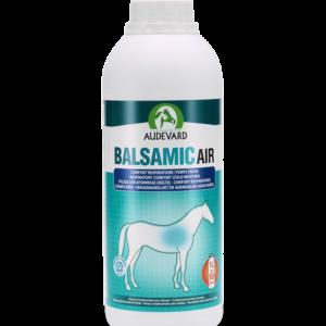 BASLAMIC AIR/1lt